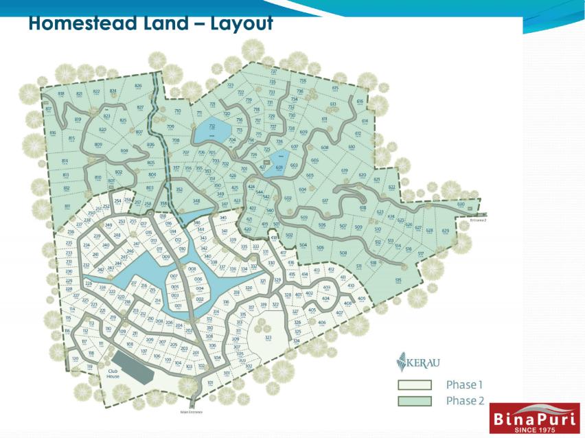 homestead land layout
